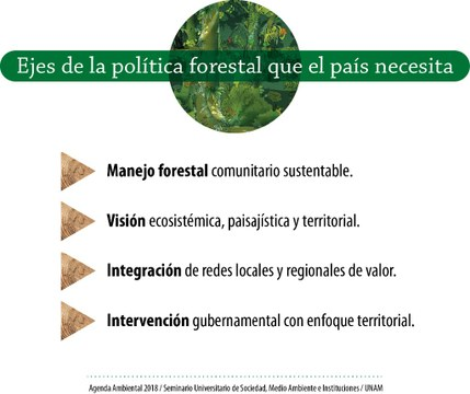 grafico forestal.jpg