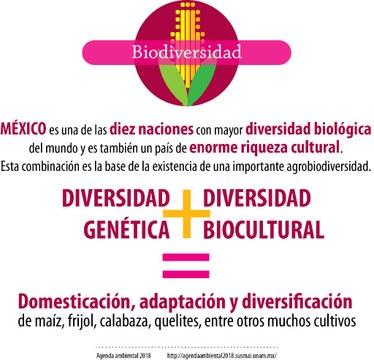06_BIODIVER_Mexico.jpg