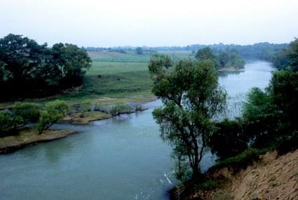 Acciones en pro del buen gobierno del agua