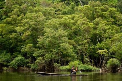 COP25 y los efectos del calentamiento global