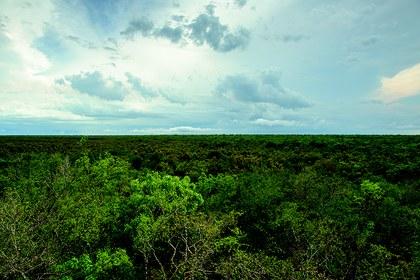 Reserva El Eden.jpg