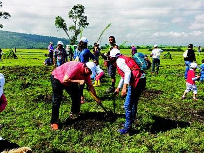 Reforestacion tepotzotlan.jpg