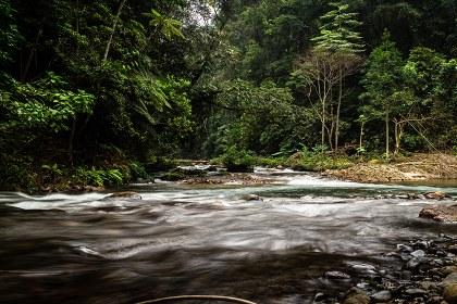 Río Negro afluente del Coatzacoalcos.jpg