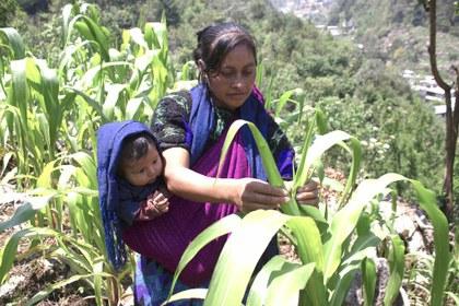 Chiapas slowfood.jpg